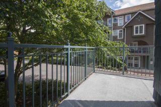 Photo 17: 202 3065 PRIMROSE LANE in Coquitlam: North Coquitlam Condo for sale : MLS®# R2072047