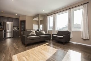 Photo 23: 411 Bridge Lake Drive in Winnipeg: Bridgwater Forest Residential for sale (1R)  : MLS®# 1706745
