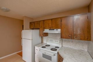 Photo 13: 141 40th Avenue SW in Calgary: Parkhill Detached for sale : MLS®# A1107597