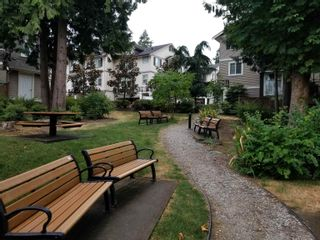 """Photo 25: 8 14377 60 Avenue in Surrey: Sullivan Station Townhouse for sale in """"BLUME"""" : MLS®# R2614903"""