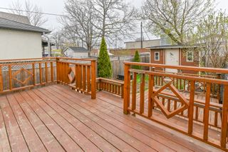 Photo 28: 93 Newlands Avenue in Hamilton: House for sale