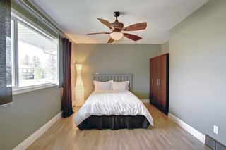 Photo 13: 406 Cole Crescent: Carseland Detached for sale : MLS®# A1147855