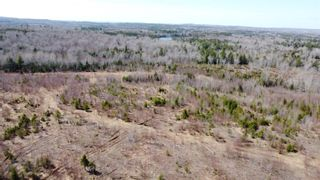 Photo 18: 8532 Trunk 4 Highway in Telford: 108-Rural Pictou County Vacant Land for sale (Northern Region)  : MLS®# 202108300