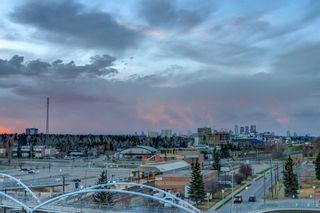 Photo 27: 717 8710 HORTON Road SW in Calgary: Haysboro Apartment for sale : MLS®# A1097461