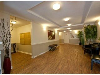 "Photo 4: 303 33090 GEORGE FERGUSON Way in Abbotsford: Central Abbotsford Condo for sale in ""Tiffany Place"" : MLS®# F1425343"