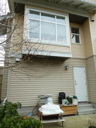 Photo 10: 125 20033 70 Avenue in Denim II: Home for sale : MLS®# F1104974