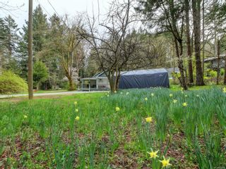 Photo 11: 867 Sayward Rd in : SE Cordova Bay House for sale (Saanich East)  : MLS®# 871953