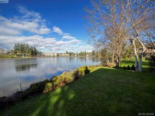 Photo 3: 916 Yarrow Pl in VICTORIA: Es Kinsmen Park House for sale (Esquimalt)  : MLS®# 780418