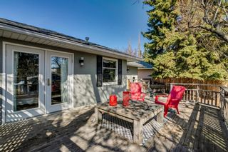 Photo 31: 436 38 Street SW in Calgary: Spruce Cliff Detached for sale : MLS®# A1097954