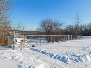 Photo 49: 57126 Rg Rd 233: Rural Sturgeon County House for sale : MLS®# E4227570