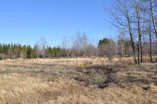 Photo 35: 10 57126 Range Road 12: Rural Barrhead County Rural Land/Vacant Lot for sale : MLS®# E4241768