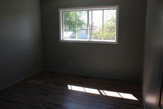 Photo 13: 15216 85 Street in Edmonton: Zone 02 House for sale : MLS®# E4248599