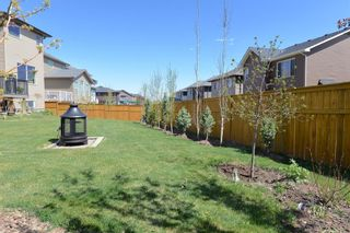 Photo 45: 130 Nolanshire Crescent NW in Calgary: Nolan Hill Detached for sale : MLS®# A1104088