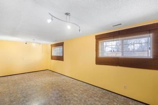 Photo 24: 128 Dovertree Place SE in Calgary: Dover Semi Detached for sale : MLS®# A1075565