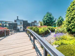 """Photo 40: 13 15850 26 Avenue in Surrey: Grandview Surrey Condo for sale in """"SUMMIT HOUSE - MORGAN CROSSING"""" (South Surrey White Rock)  : MLS®# R2602091"""