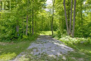 Photo 16: 1832 COUNTY RD. 40 Road in Quinte West: Vacant Land for sale : MLS®# 40154512