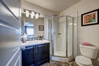 Photo 25: 228 Red Embers Way NE in Calgary: Redstone House for sale : MLS®# C4135451