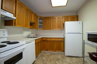 Photo 6: 304 9 Burland Avenue in Winnipeg: River Park South Condominium for sale (2F)  : MLS®# 1924259