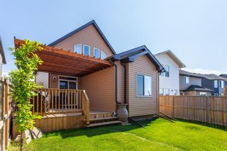 Photo 35: 2485 RAVENSWOOD View SE: Airdrie Detached for sale : MLS®# C4305172
