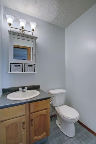 Photo 19: 317 Big Springs Court SE: Airdrie Detached for sale : MLS®# A1152002
