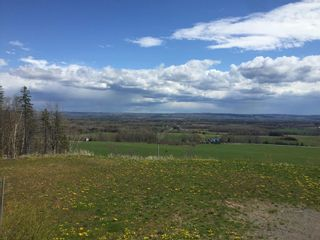 Photo 13: 808 Morden Road in Weltons Corner: 404-Kings County Vacant Land for sale (Annapolis Valley)  : MLS®# 202102895