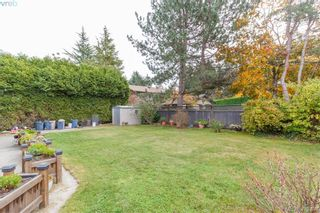 Photo 29: 6245 Tayler Crt in VICTORIA: CS Tanner House for sale (Central Saanich)  : MLS®# 831673