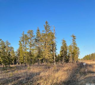 Photo 3: Over 1 acre lots in Hudson Bay: Lot/Land for sale : MLS®# SK850482