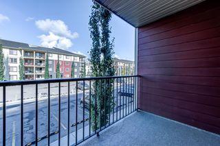 Photo 25: 204 5816 MULLEN Place in Edmonton: Zone 14 Condo for sale : MLS®# E4262303