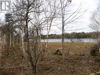 Photo 9: Lot East Port Loop Road in East Port Medway: Vacant Land for sale : MLS®# 202000583