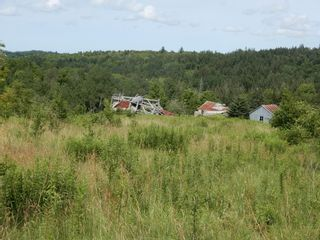 Photo 20: 299 New Lairg Road in New Lairg: 108-Rural Pictou County Vacant Land for sale (Northern Region)  : MLS®# 202117815
