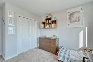 Photo 31: 358 Coventry Circle NE in Calgary: Coventry Hills Detached for sale : MLS®# A1091760