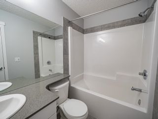 Photo 21: 2613 201 Street in Edmonton: Zone 57 Attached Home for sale : MLS®# E4262204