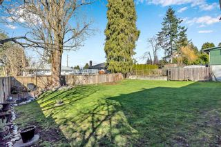 """Photo 6: 11395 92 Avenue in Delta: Annieville House for sale in """"Annieville"""" (N. Delta)  : MLS®# R2551752"""