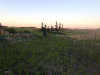 Photo 1:  in Edmonton: Zone 55 Vacant Lot for sale : MLS®# E4134378