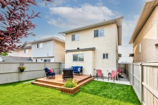 Photo 35: 173 Martinglen Way NE in Calgary: Martindale Detached for sale : MLS®# A1144697