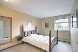 Photo 12: 212 8604 48 Avenue NW in Calgary: Bowness Apartment for sale : MLS®# A1138571