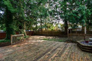 Photo 41: 20838 117th Avenue in MAPLE RIDGE: Home for sale