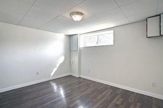 Photo 33: 3036 Doverville Crescent SE in Calgary: Dover Semi Detached for sale : MLS®# A1148570