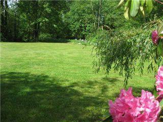 Photo 31: 22445 127th Avenue in Maple Ridge: Home for sale