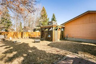 Photo 28: 10565 26 Avenue in Edmonton: Zone 16 House for sale : MLS®# E4237049