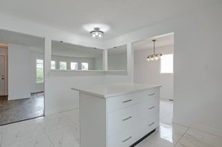 Photo 15: 17311 77 Avenue in Edmonton: Zone 20 House for sale : MLS®# E4255774