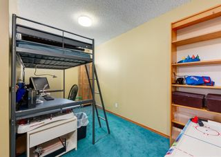 Photo 28: 14 Royal Birch Grove NW in Calgary: Royal Oak Detached for sale : MLS®# A1073749