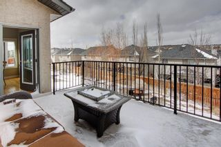 Photo 37: 70 Royal Ridge Mount NW in Calgary: Royal Oak Detached for sale : MLS®# A1101714