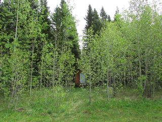 Photo 8: 103, 5227 TWP RD 320: Rural Mountain View County Land for sale : MLS®# C4299948