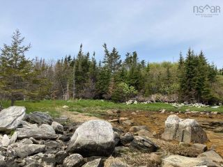 Photo 23: Lot Mushaboom Road in Mushaboom: 35-Halifax County East Vacant Land for sale (Halifax-Dartmouth)  : MLS®# 202114485