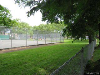 Photo 21: 111 909 Pembroke St in : Vi Central Park Condo for sale (Victoria)  : MLS®# 877768
