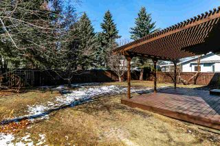 Photo 37: 18 PAGE Drive: St. Albert House for sale : MLS®# E4236181