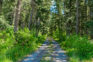 Photo 4: 3977 Myers Frontage Road: Tappen House for sale (Shuswap)  : MLS®# 10134417
