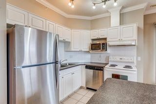 Photo 4: 304 1777 1 Street NE in Calgary: Tuxedo Park Apartment for sale : MLS®# A1103048