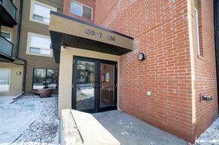 Photo 42: 202 13907 136 Street in Edmonton: Zone 27 Condo for sale : MLS®# E4226852